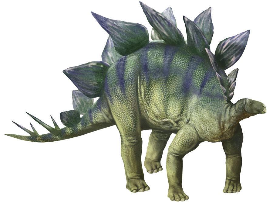 Top Ten Animales Extintos Hace Millones De Anos ¿crees que los dinosaurios eran aterradores? animales extintos hace millones de