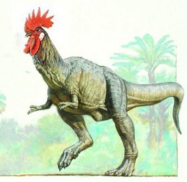 DinoPollo