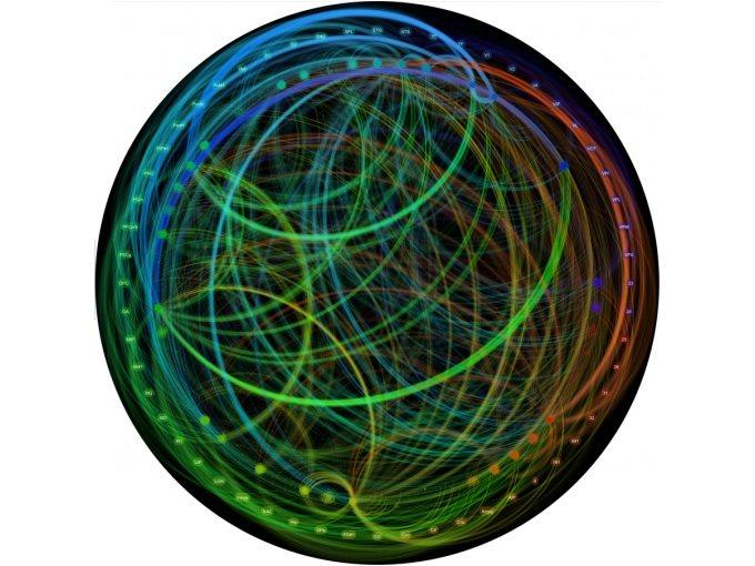 IBM y DARPA avanzan en el proyecto SyNAPSE