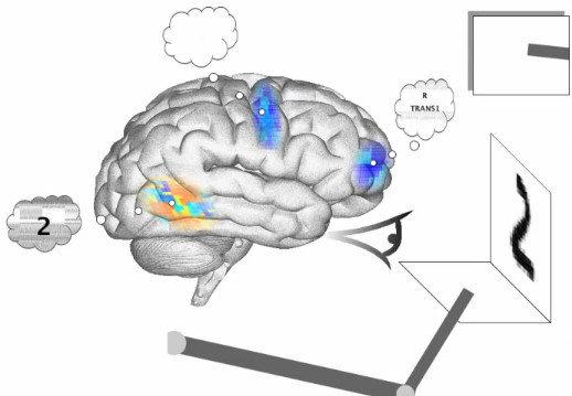Spaun: El cerebro simulado más complejo (vídeo)