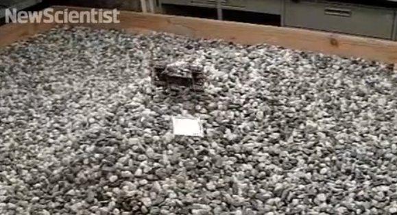 VELOCIRoACH: El segundo robot más rápido del mundo (vídeo)