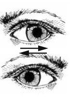 Si quieres recordar algo, mueve tus ojos