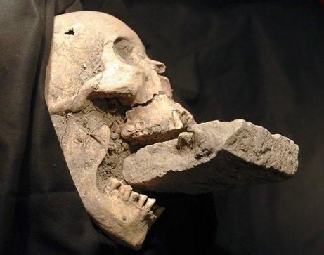 """Calavera de """"vampiro"""" encontrada en Venecia"""