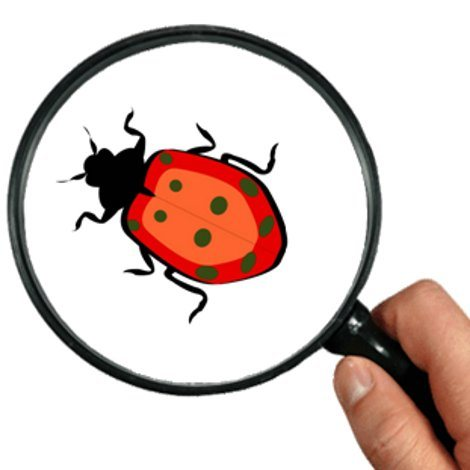 Tipos de bugs de software