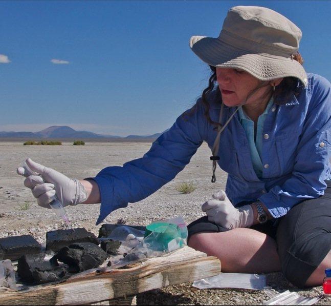 La NASA develó el misterio: Vida en arsénico