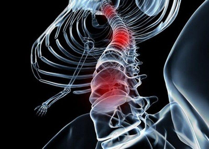 Gran avance con células madre para combatir lesiones de médula espinal
