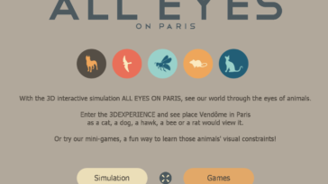 All Eyes in Paris