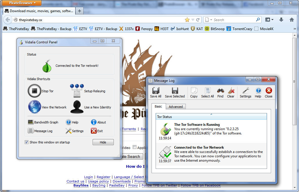 Navegador Web PirateBrowser