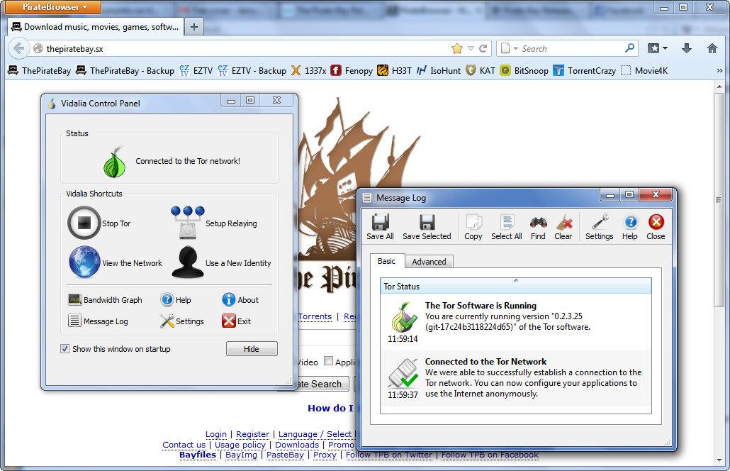 Navegador Web PirateBrowser