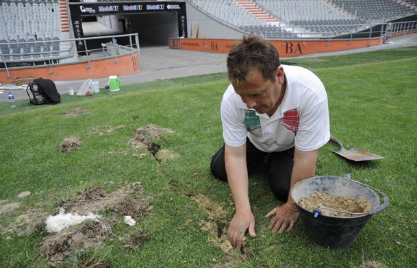El dise o de los estadios de f tbol el c sped neoteo - Como plantar cesped en el jardin ...