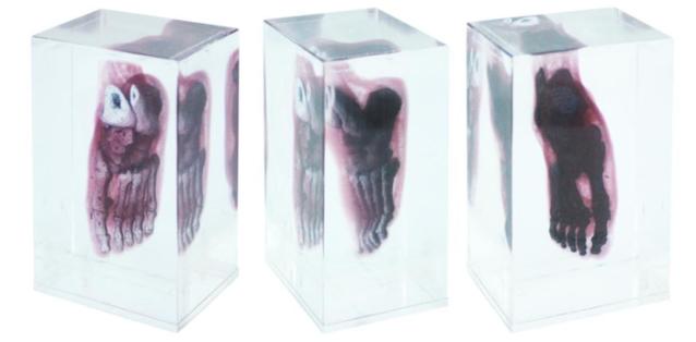 Looking Glass: Crea esculturas holográficas con impresión volumétrica