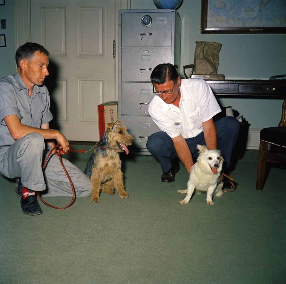 El terrier Charlie y Pushinka, un combo explosivo en la Casa Blanca