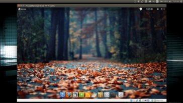Máquinas virtuales Linux