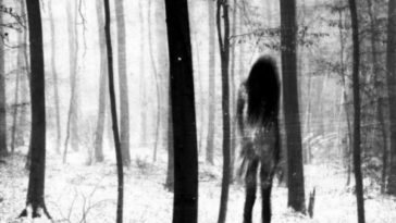 SCP-1692