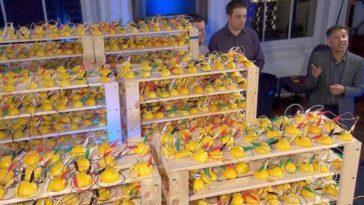 Batería de limones