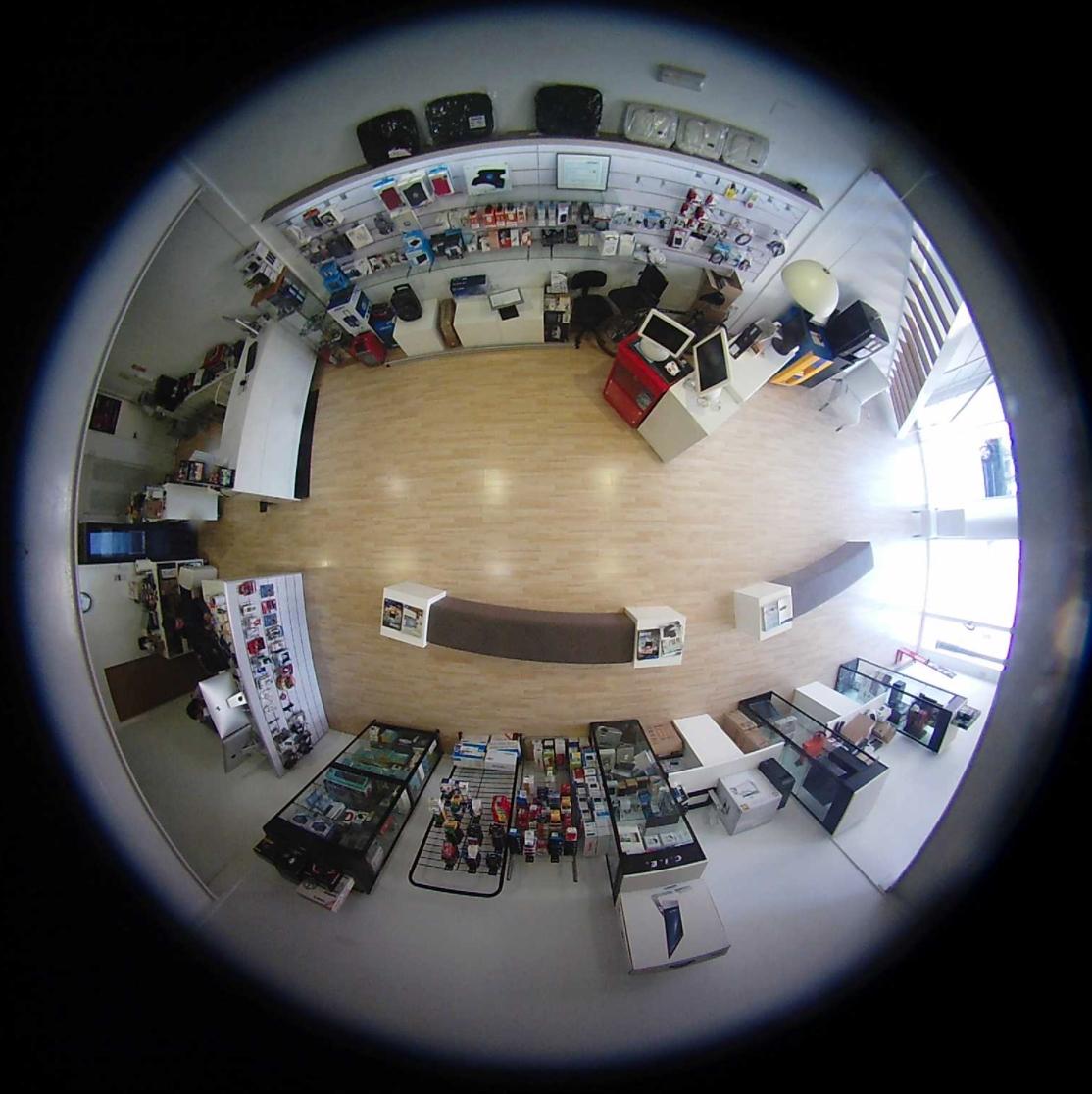 cámaras de vigilancia en vivo